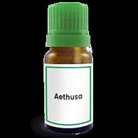Abbildung des homöopathischen Einzelmittels Aethusa