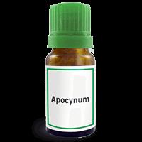 Abbildung des homöopathischen Einzelmittels Apocynum