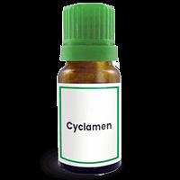 Abbildung des homöopathischen Einzelmittels Cyclamen