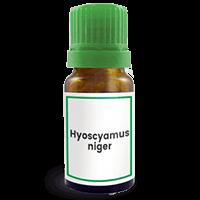 Abbildung des homöopathischen Einzelmittels Hyoscyamus niger