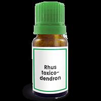 Abbildung des homöopathischen Einzelmittels Rhus toxicodendron